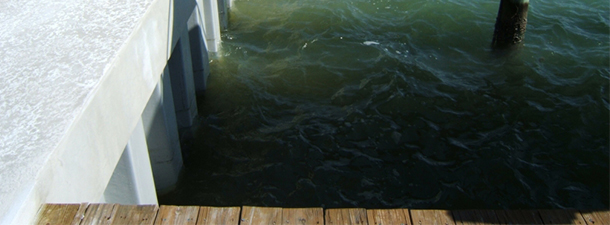 Vinyl and Concrete Seawalls | Clearwater | Priority Marine